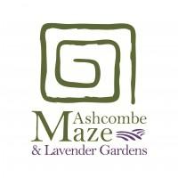 Ashcombe Maze Logo